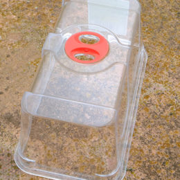 Lid for Mini Seed Tray