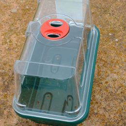 Mini Seed Tray With Clear Lid