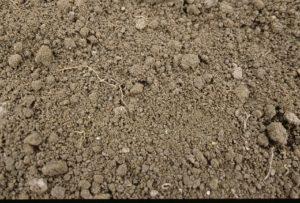 Soil with a fine tilth